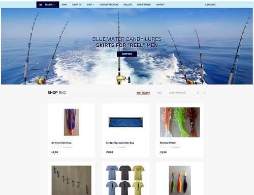 New eCommerce Web Design for Blue Water Candy!