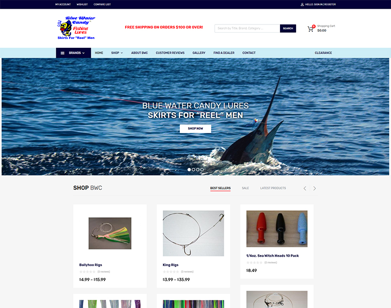Wilmington NC Wordpress Design